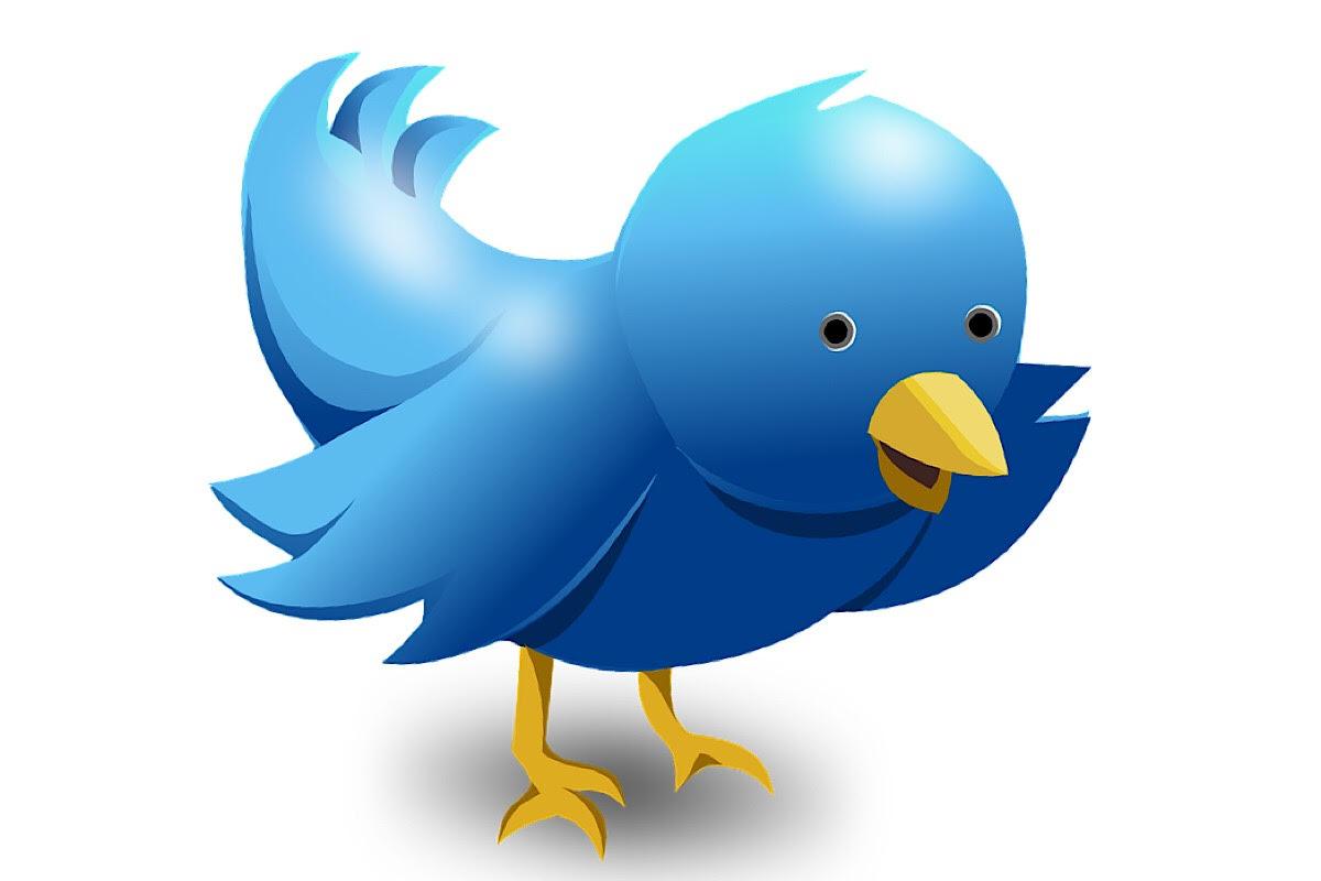 Social Media Twitter: pixabay.com